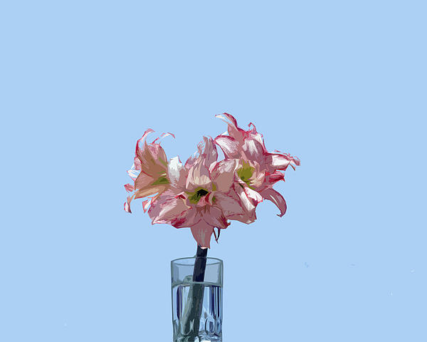 Amaryillis Belladonna Against The Spring Florida Sky. Painting  - Amaryillis Belladonna Against The Spring Florida Sky. Fine Art Print