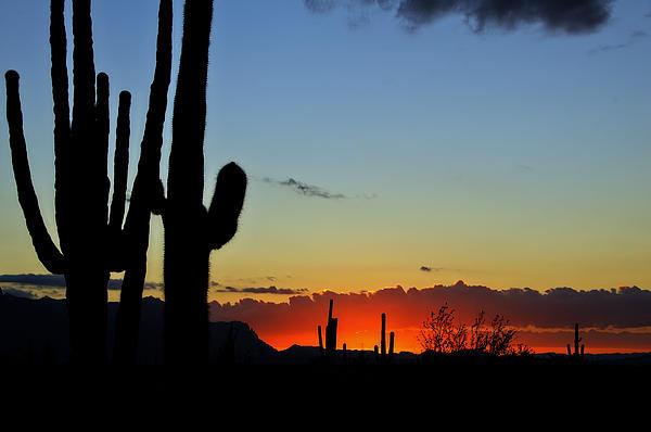 An Arizona Sunrise Print by Saija  Lehtonen