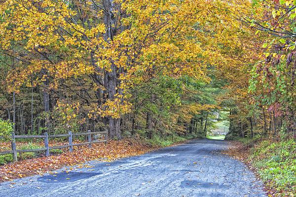 Tom Singleton - Autumn Road