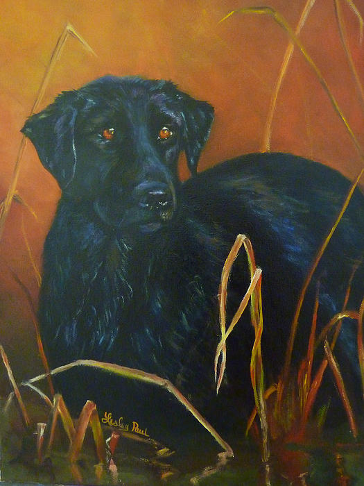 Lesley Paul - Black Lab