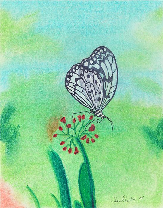 Butterfly Print by Susan Schmitz
