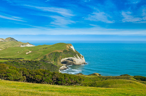 Cape Farewell Able Tasman National Park Print by Ulrich Schade