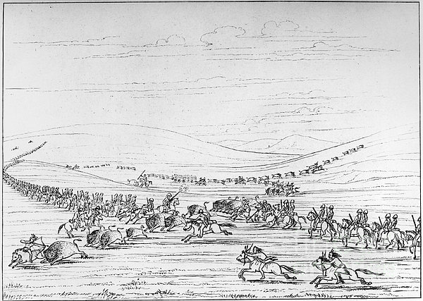 Catlin: Buffalo Hunt Print by Granger