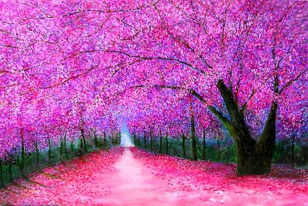 Marie-Line Vasseur - Cherry blossoms lane