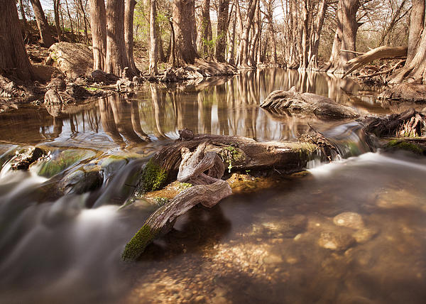 Cibolo Creek Print by Paul Huchton