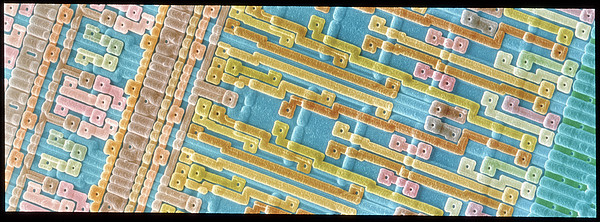 Coloured Sem Of Surface Of An Eprom Silicon Chip Print by Power And Syred