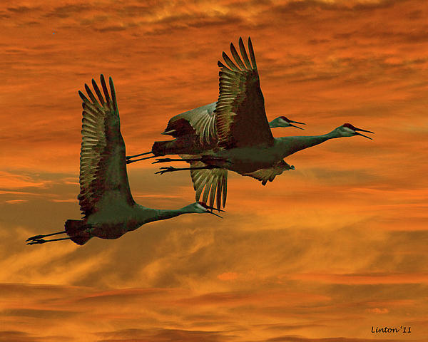 Cranes At Sunrise Print by Larry Linton