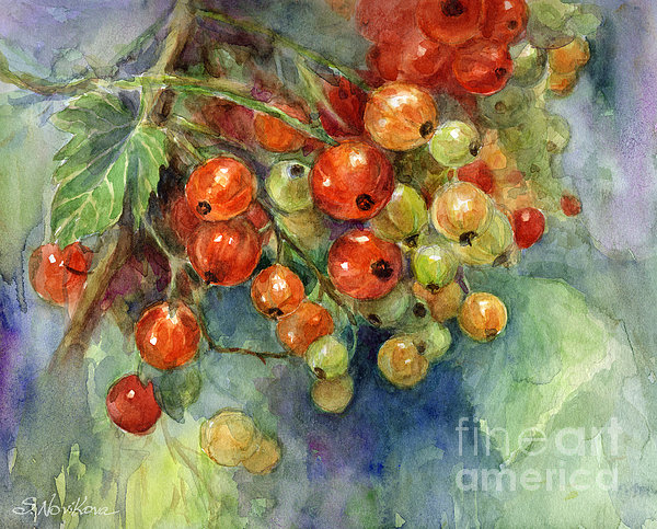 Currants Berries Painting Print by Svetlana Novikova