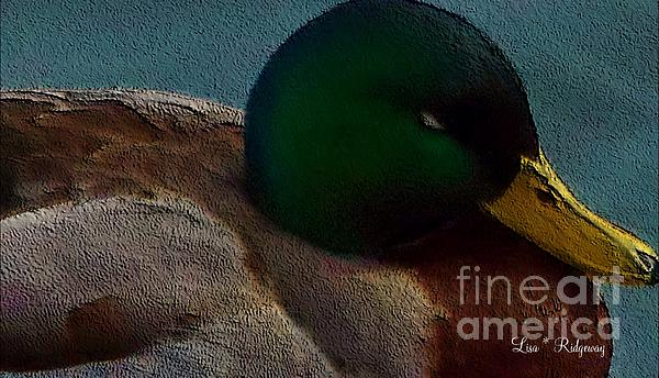 Dad's Mallard Duck Print by Lisa  Ridgeway