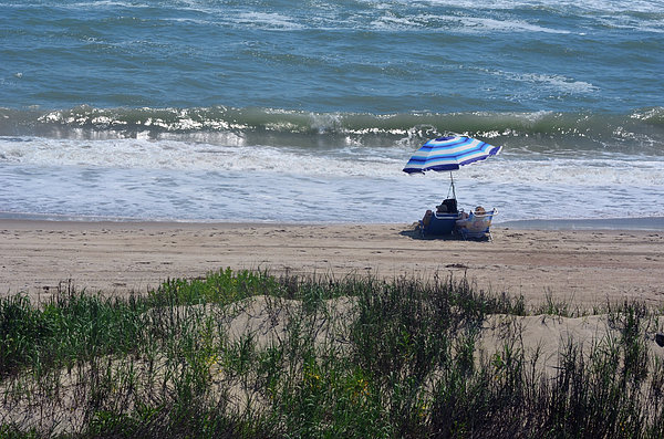 Day At The Beach Print by Sandi OReilly