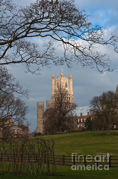 Ely Cathedral  Print by Andrew  Michael