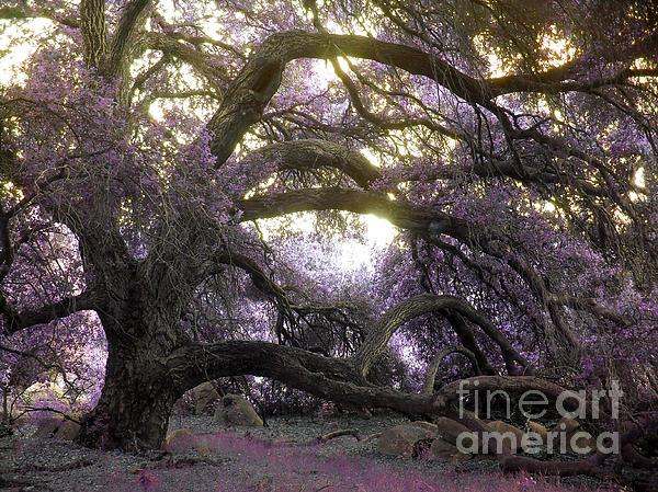 Fairy Tree Print by Robert Ball