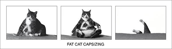Richard Watherwax - Fat Cat Capsizing