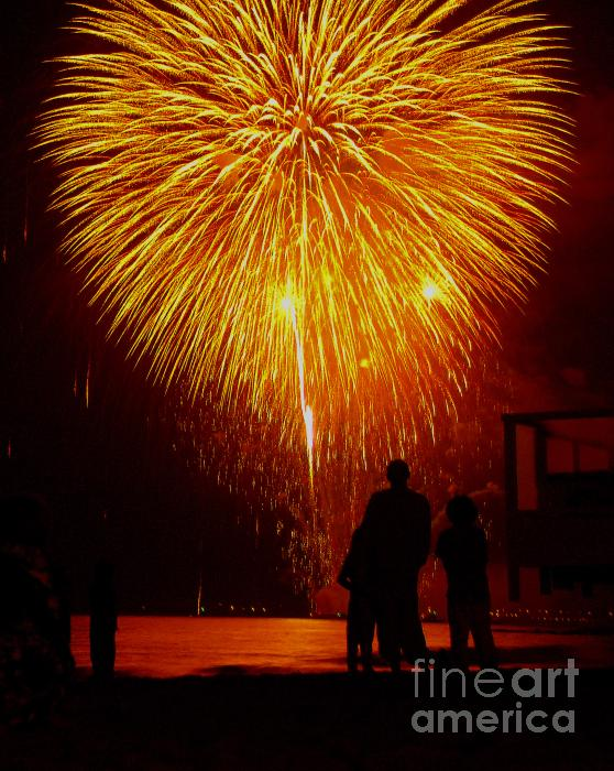 Fireworks Photograph  - Fireworks Fine Art Print