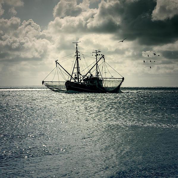 Fishing Boat Print by Joana Kruse