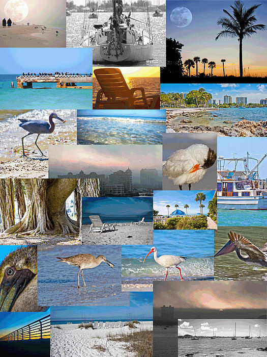 Florida Collage Print by Betsy A  Cutler