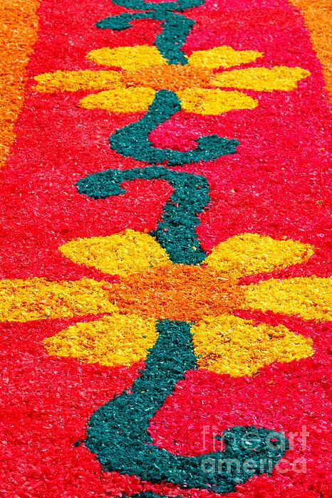 Flower Carpets Print by Gaspar Avila