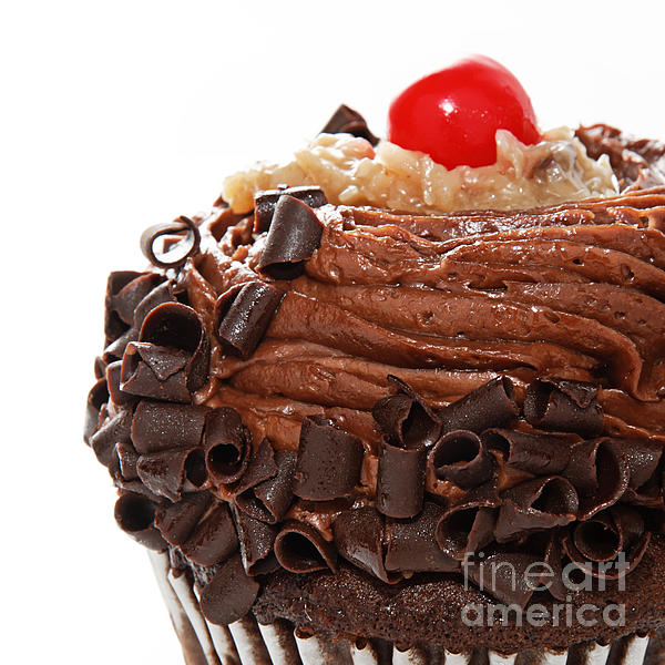 German Chocolate Cupcake 3 Photograph