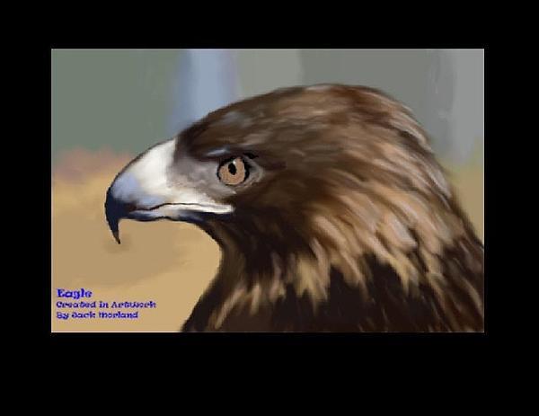 Jack Jk Morland - Golden eagle