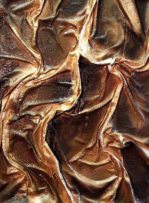Angela Stout - Golden Snake Skin