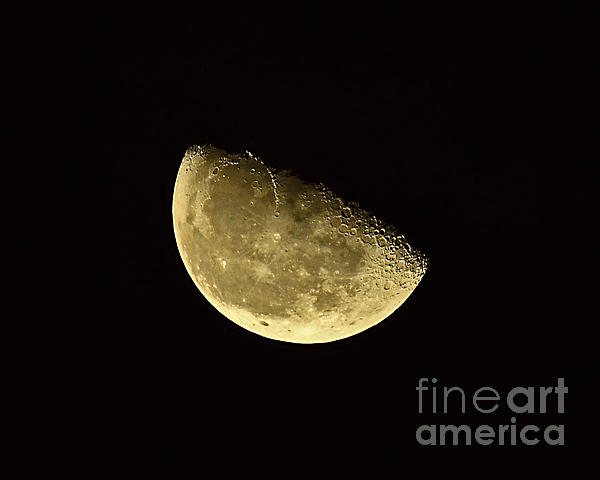 Handsome Half Moon Print by Al Powell Photography USA