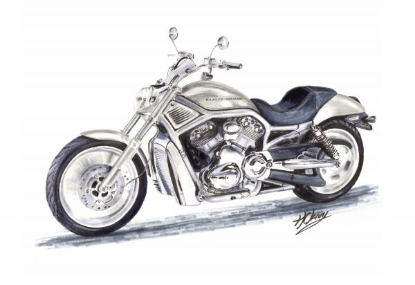 Terence John Cleary - Harley Davidson V-Rod