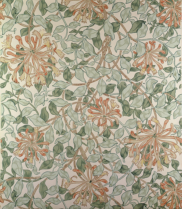 Honeysuckle Design Print by William Morris