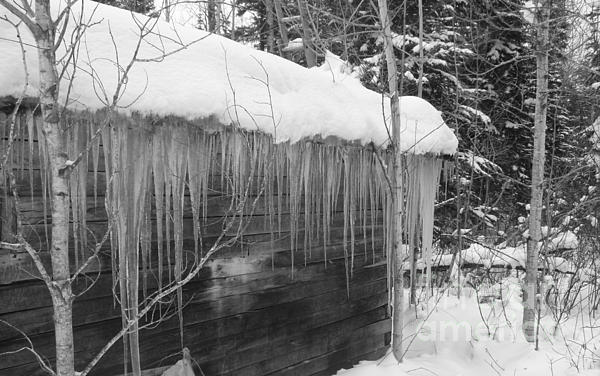 Sue Jenkins - Ice Cabin