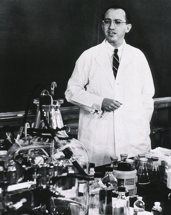 Jonas E. Salk 1914-1995, American Print by Everett