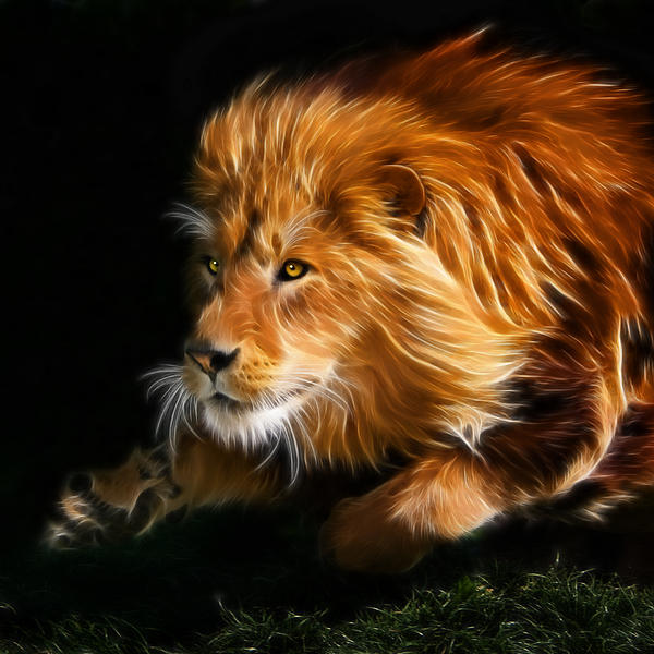 Male Lion Fractal Print by Julie L Hoddinott