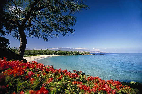 Mauna Kea Beach Print by Dana Edmunds - Printscapes