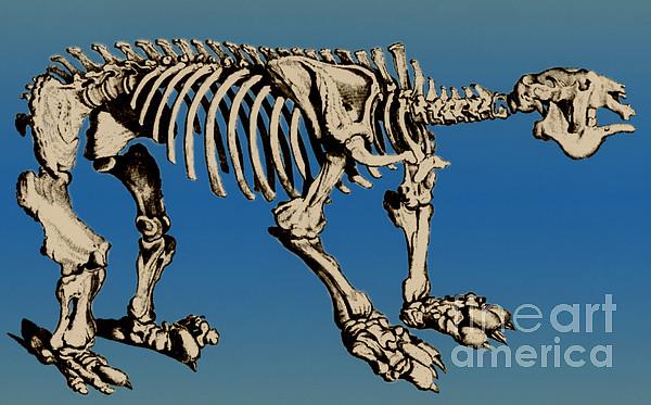 Megatherium Extinct Ground Sloth Print by Science Source