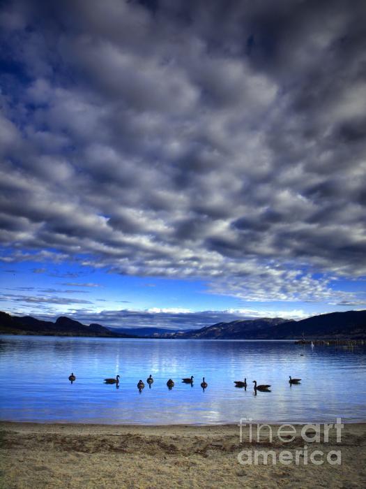 Morning Light On Okanagan Lake Print by Tara Turner
