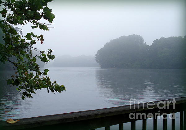 Morning Mist Print by Gladys Steele