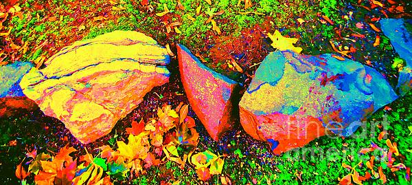 Ann Johndro-Collins - My Back Yard Rocks