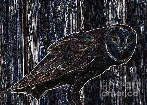 Night Owl - Digital Art Print by Carol Groenen