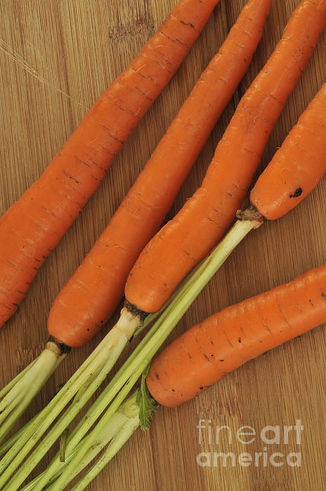 Orange Carrots Print by Timothy OLeary