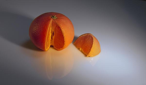 Orange Print by Svetlana Sewell