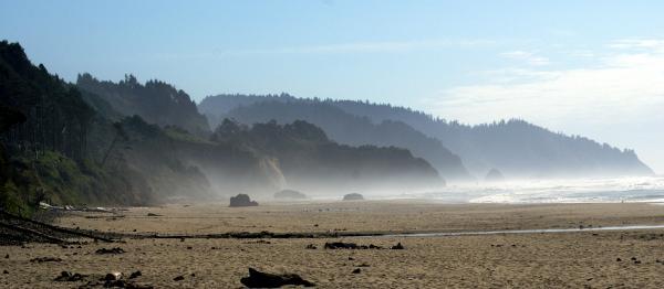 Oregon Coast 8 Print by Marty Koch