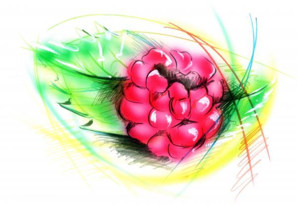 Raspberry Print by Nick Freemon