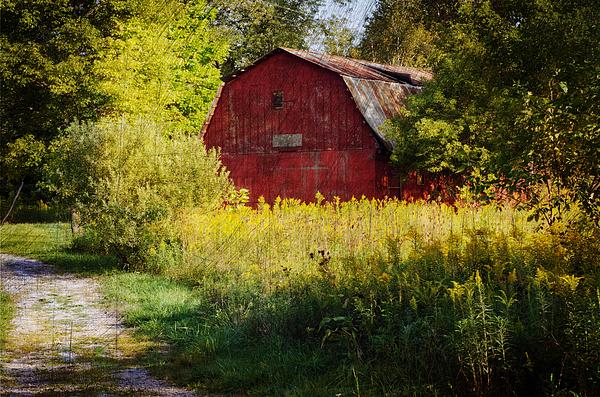 Cheryl Cencich - Red barn