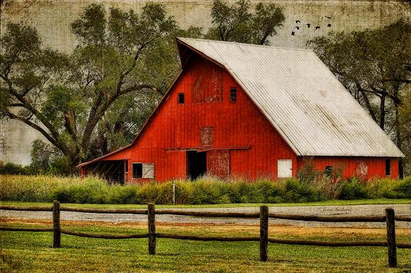 Red Barn Print by Joan Bertucci