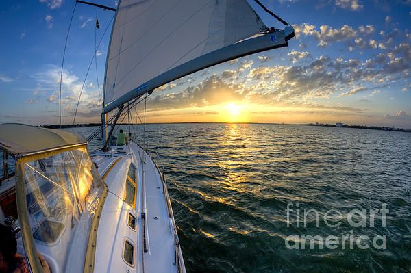 Sailing Sunset Charleston Sc Beneteau 49 Print by Dustin K Ryan
