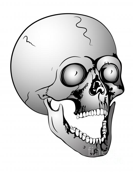 Screaming Skull Print by Michal Boubin