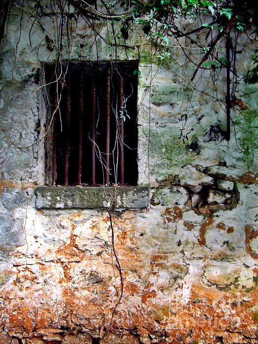 Angela Pari  Dominic Chumroo - Slave House Window