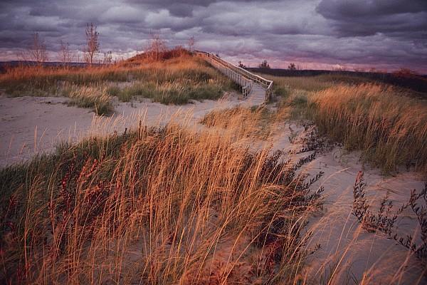 Sleeping Bear Dunes National Lakeshore Print by Melissa Farlow