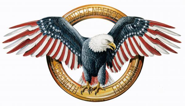 The American Eagle Painting  - The American Eagle Fine Art Print