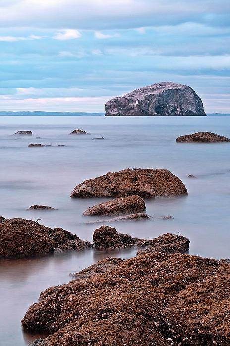 The Bass Rock Print by Amanda Finan