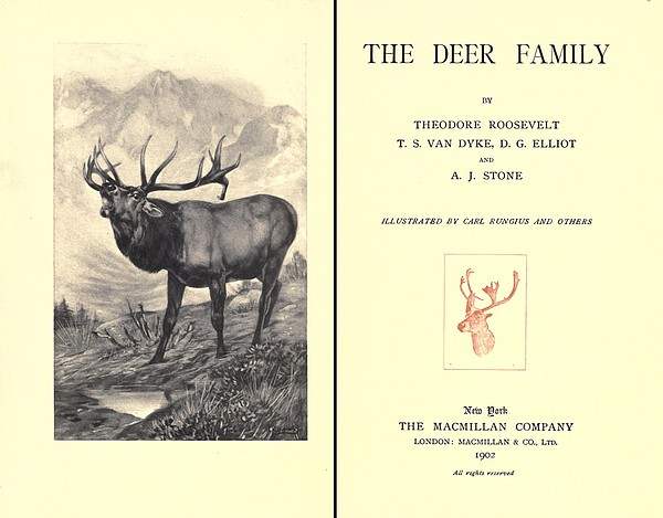 The Deer Family Was First Published Print by Everett