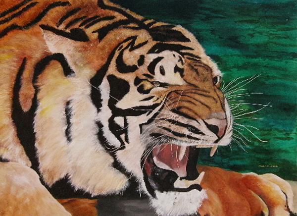 Tiger Paw Print by Shahid Muqaddim
